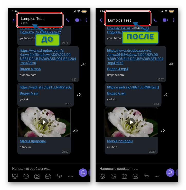 Viber для Android Результат деактивации статуса В сети в мессенджере