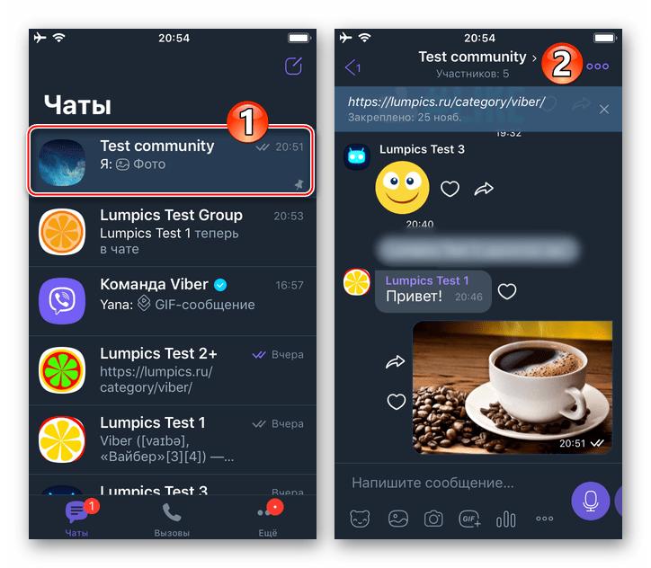 Viber для iPhone переход в администрируемое сообщество, вызов параметров чата