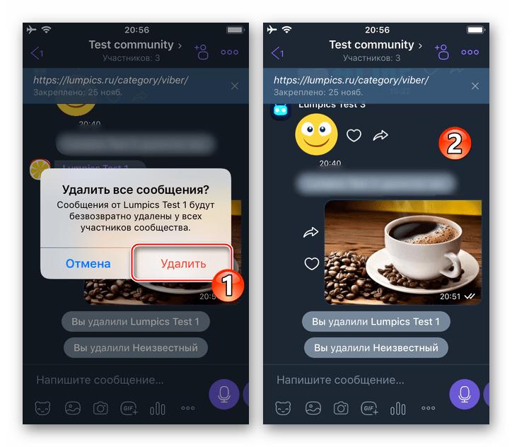 Viber для iPhone подтверждение удаления всех сообщений участника, исключенного из сообщества