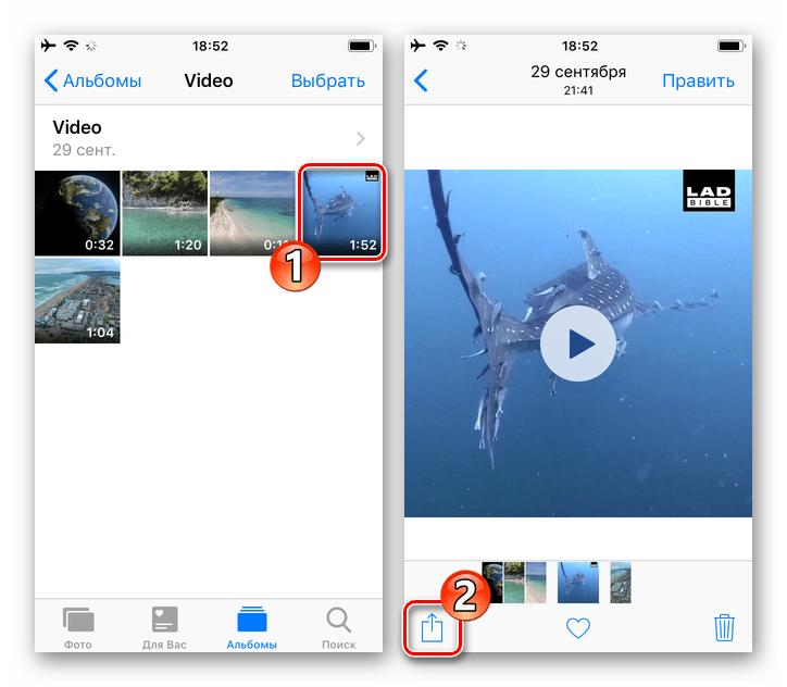 Viber для iPhone значок Поделиться на экране проигрывателя видео из приложения Фото