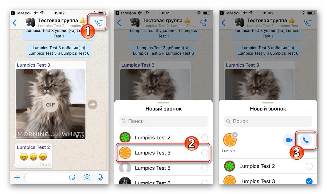 WhatsApp для iPhone голосовой вызов одного из участников группового чата в мессенджере
