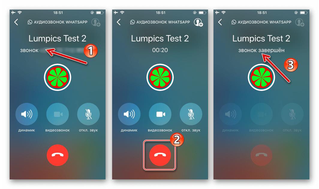 WhatsApp для iPhone процесс голосового вызова, инициированный из чата