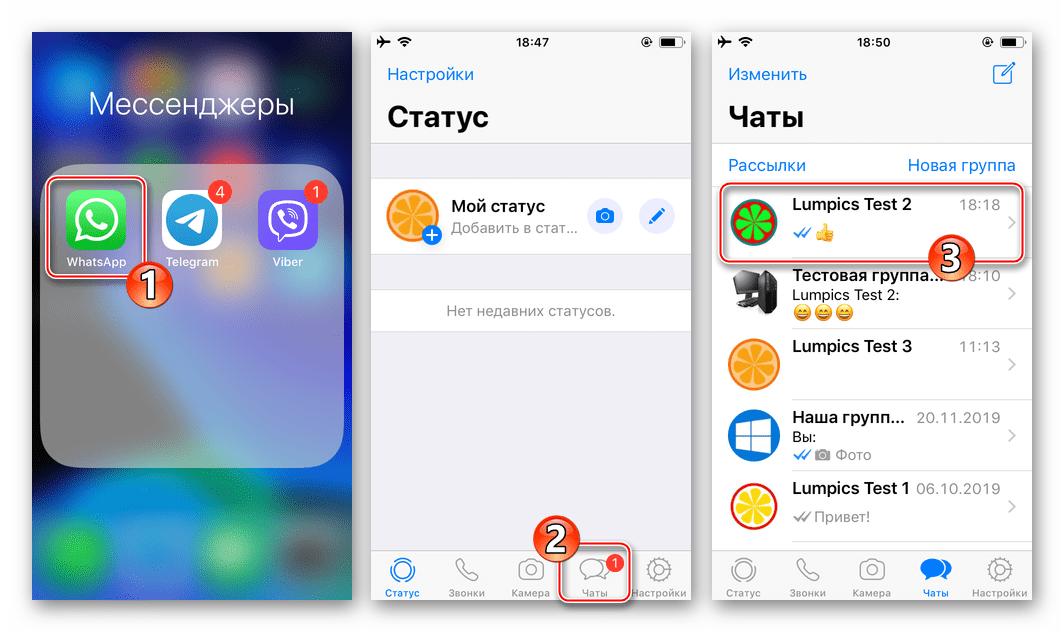 WhatsApp для iPhone запуск мессенджера переход в чат, для голосового вызова другого пользователя
