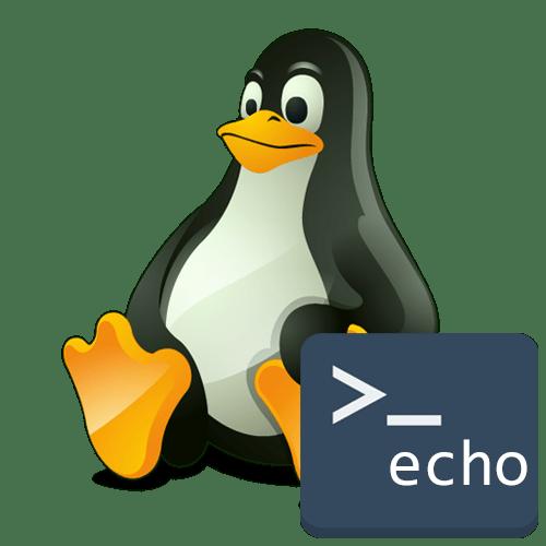 Команда echo в Linux