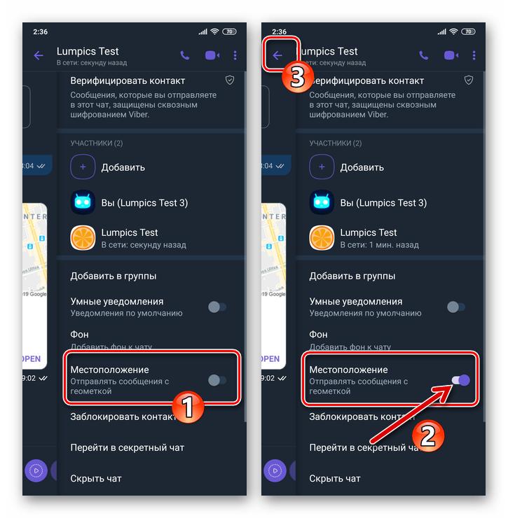 Viber для Android активация опции Отправлять сообщения с геометкой в чате