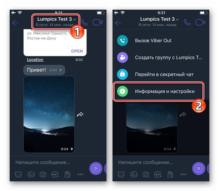Viber для iPhone - переход в раздел Информация и настройки чата или группы