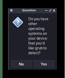 Вопрос о наличии дополнительных операционных систем перед установкой Zen Installer