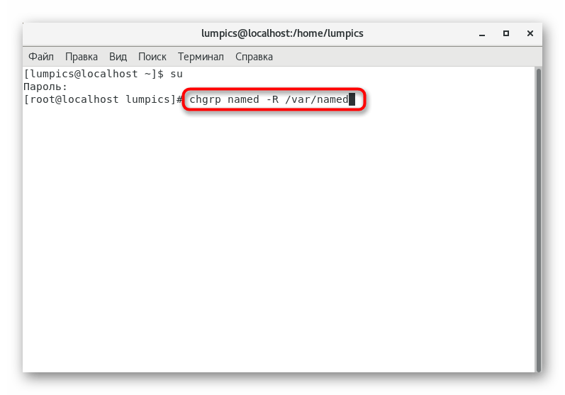 Ввод команд для настройки доступа к DNS в CentOS