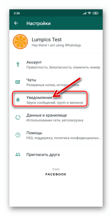 WhatsApp для Android - Раздел Уведомления в Настройках мессенджера