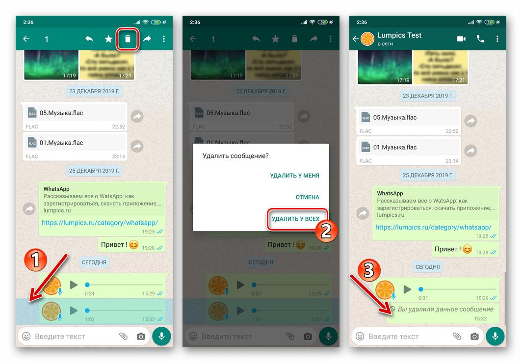 WhatsApp для Android удаление отправленого голосового сообщения у себя и собеседника