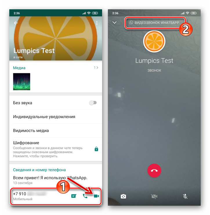 WhatsApp для Android видеозвонок пользователю с его карточки контакта