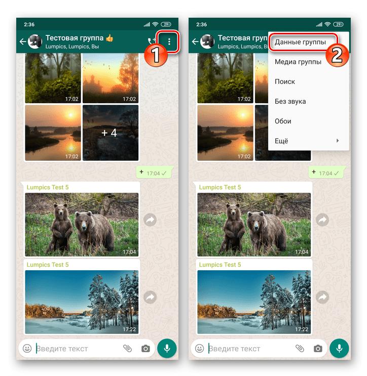 WhatsApp для Android - вызов экрана Данные группы или Просмотр контакта в чате