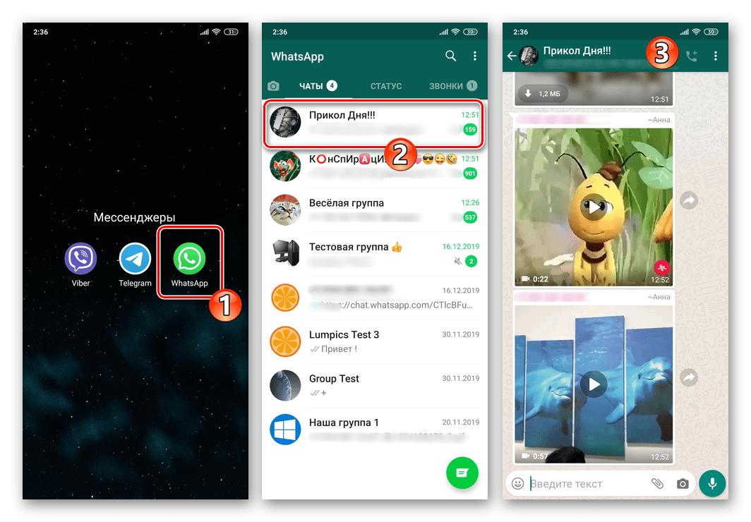 WhatsApp для Android запуск мессенджера, переход в группу для отключения уведомлений из неё