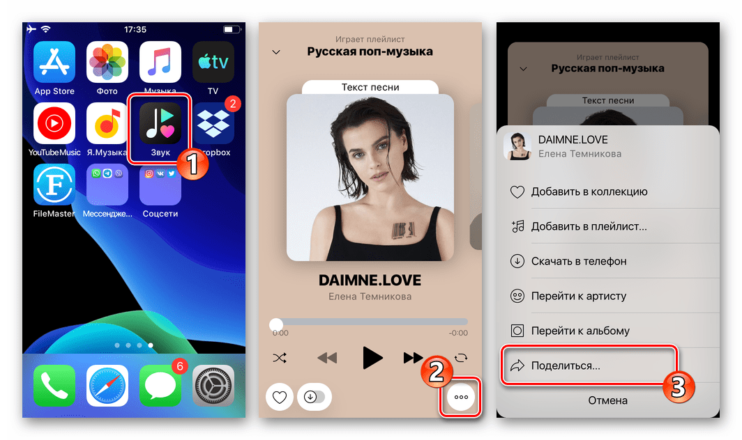 WhatsApp для iOS - опция Поделиться в программе стримингового сервиса Zvooq задействуемая для передачи аудиозаписи через мессенджер