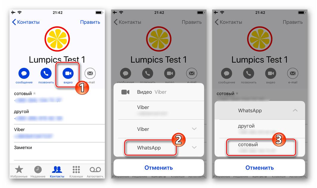 WhatsApp для iPhone опция видео в карточке контакта из адресной книге iOS, выбор мессенджера, начало видеозвонка
