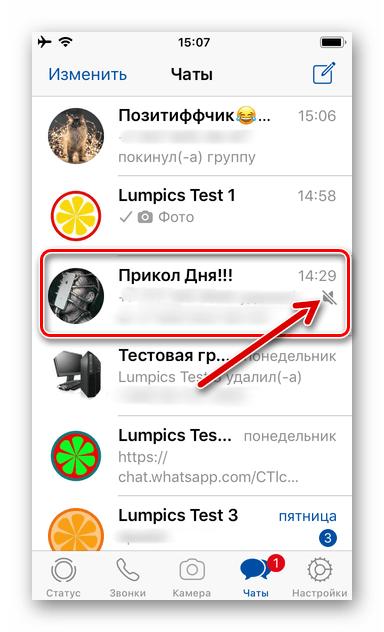WhatsApp для iPhone - все уведомления из группового чата отключены