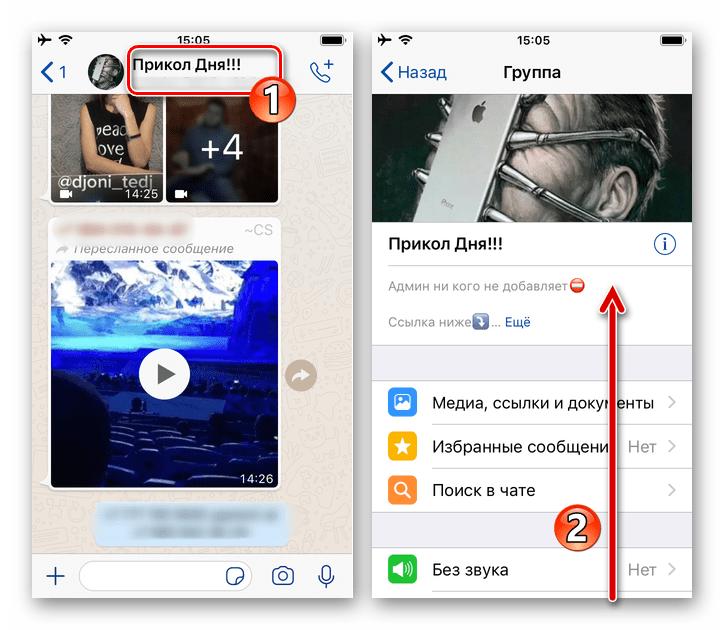 WhatsApp для iPhone - вызов экрана Информация и настройки в групповом чате