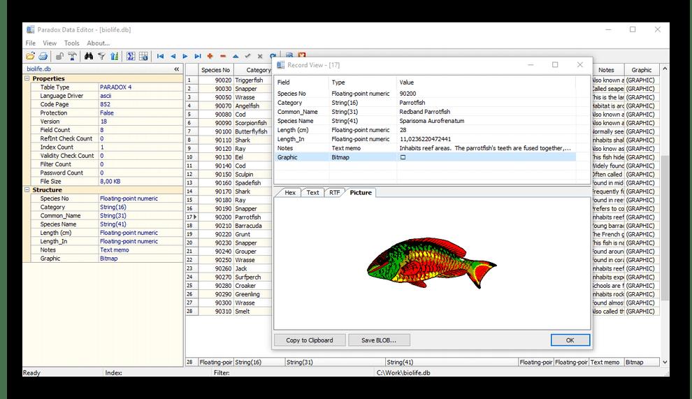 Интерфейс программы Paradox Data Editor