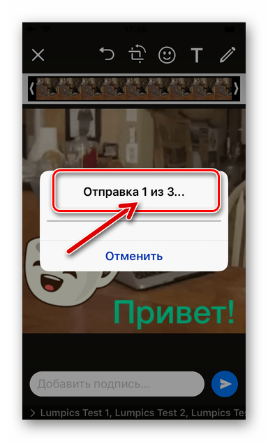 Процесс отправки GIF-файлов из Documents от Readdle через WhatsApp для iOS