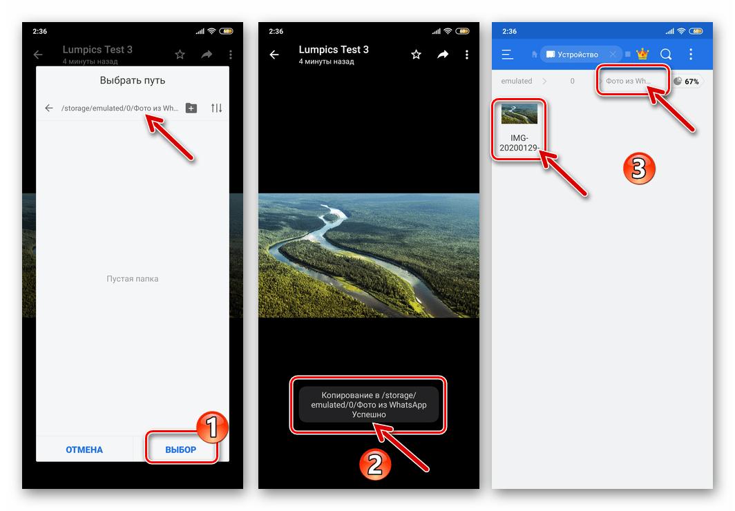 WhatsApp для Android копирование фото из мессенджера в папку в хранилище смартфона успешно завершено