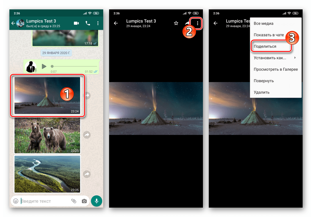 WhatsApp для Android переход к функции Поделиться с экрана просмотра фото из переписки