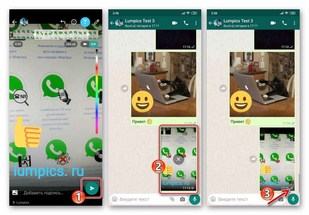 WhatsApp для Android процесс отправки и доставки созданной через мессенджер гифки