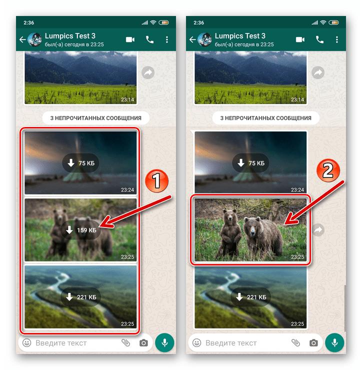 WhatsApp для Android просмотр фото и его одновременное сохранение в хранилище смартфона