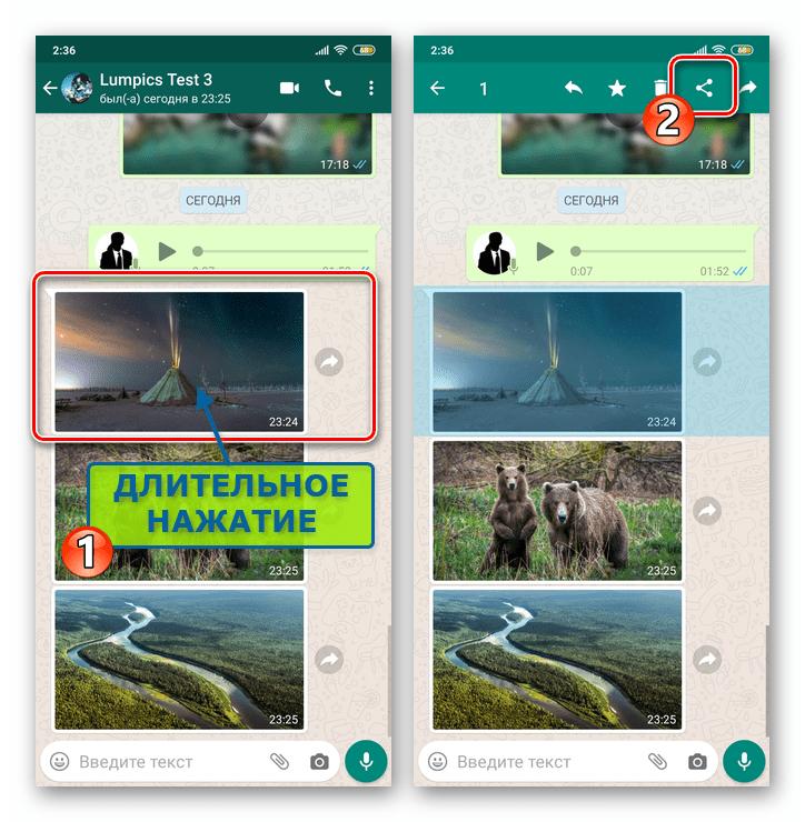 WhatsApp для Android выбрать Поделиться для выделенного в переписке сообщения-картинки