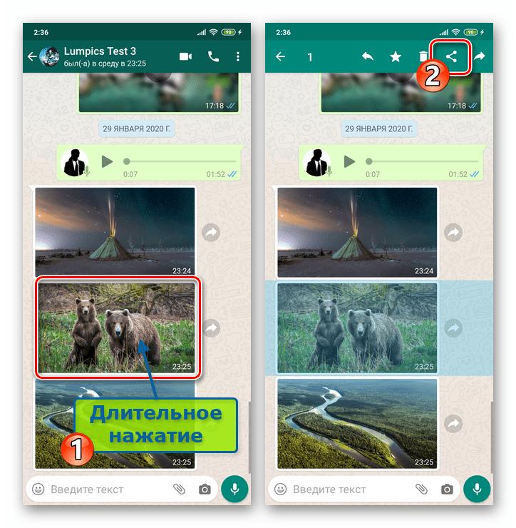 WhatsApp для Android выделить фото в переписке - значок Отправить
