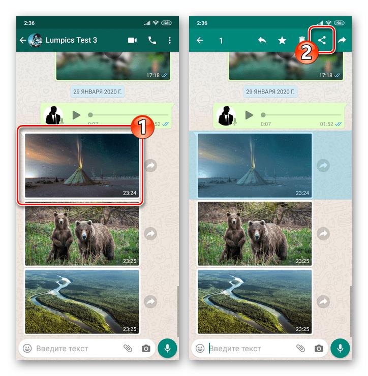 WhatsApp для Android вызов функции Поделиться для изображения в чате