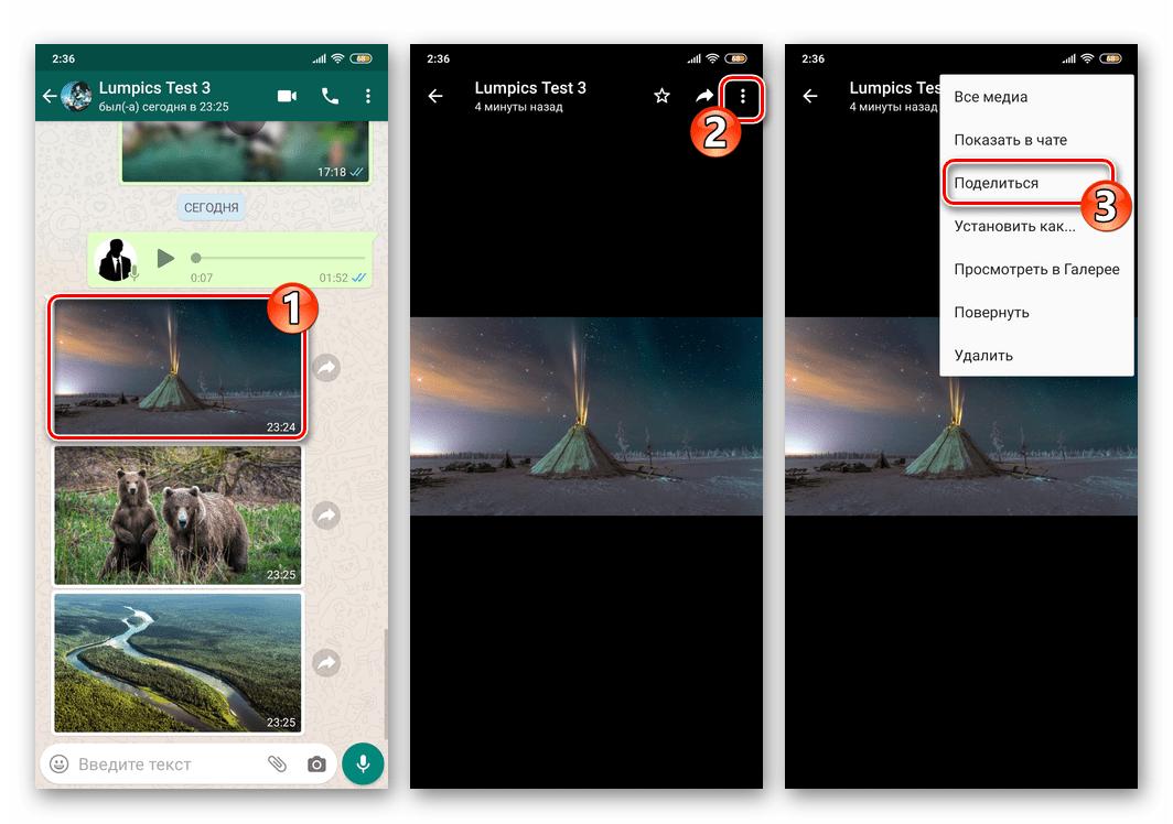 WhatsApp для Android вызов функции Поделиться из режима полноэкранного просмотра фото
