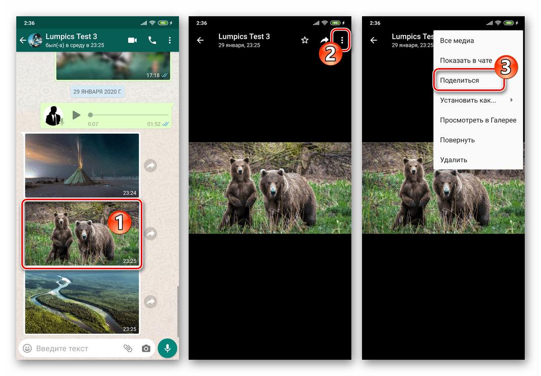 WhatsApp для Android - вызов функции Поделиться с экрана полноразмерного просмотра фото из чата