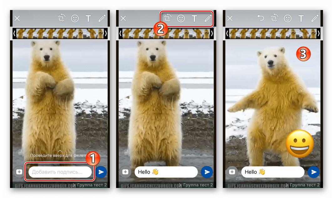 WhatsApp для iOS отправка гифки из памяти iPhone - добавление описания и эффектов