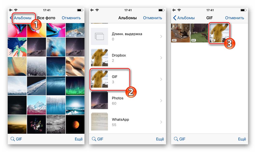 WhatsApp для iOS выбор GIF для отправки в чат в хранилище iPhone