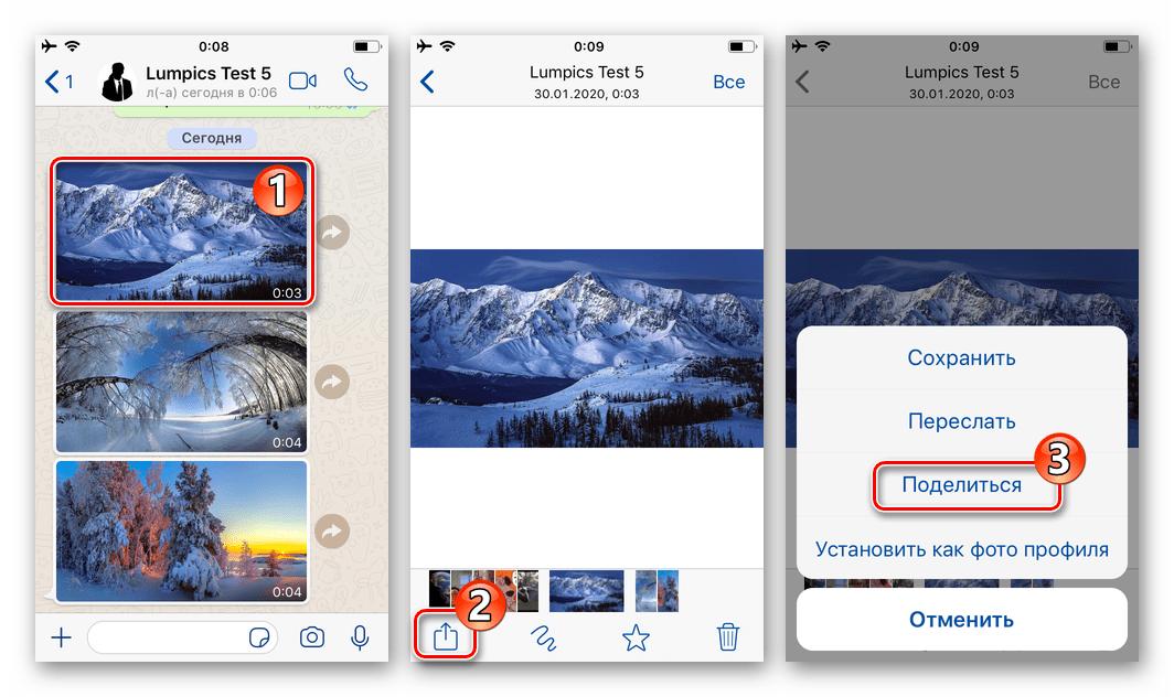 WhatsApp для iOS вызов функции Поделиться из режима полноэкранного просмотра фото в мессенджере