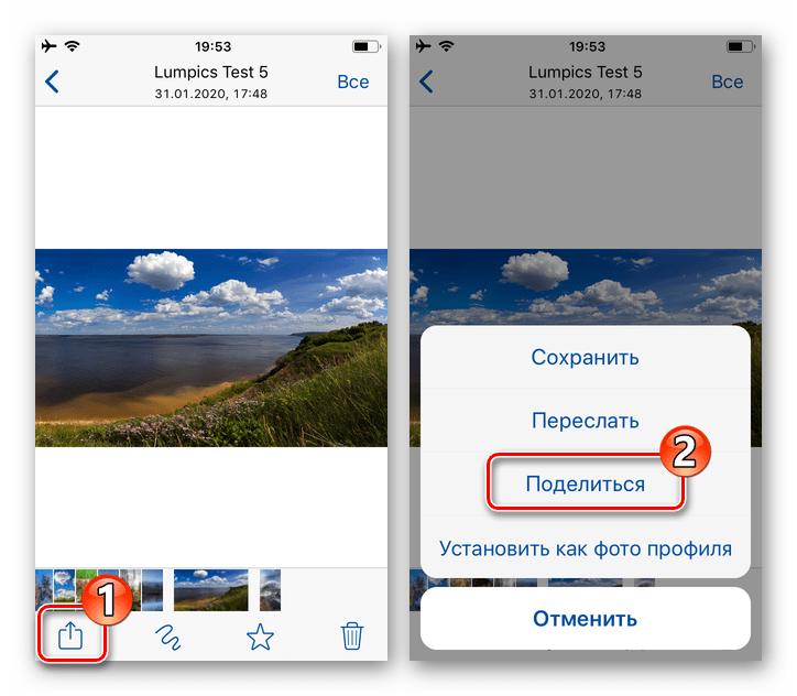WhatsApp для iPhone переход к пересылке фото из мессенджера на ПК через интернет-сервис