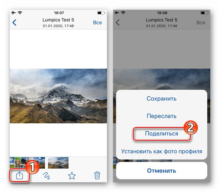 WhatsApp для iPhone вызов функции Поделиться в режиме полноэкранного просмотра фото из чата