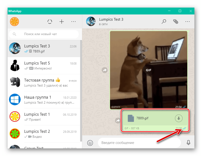 WhatsApp для Windows доставка GIF-файла с компьютера через мессенджер завершена