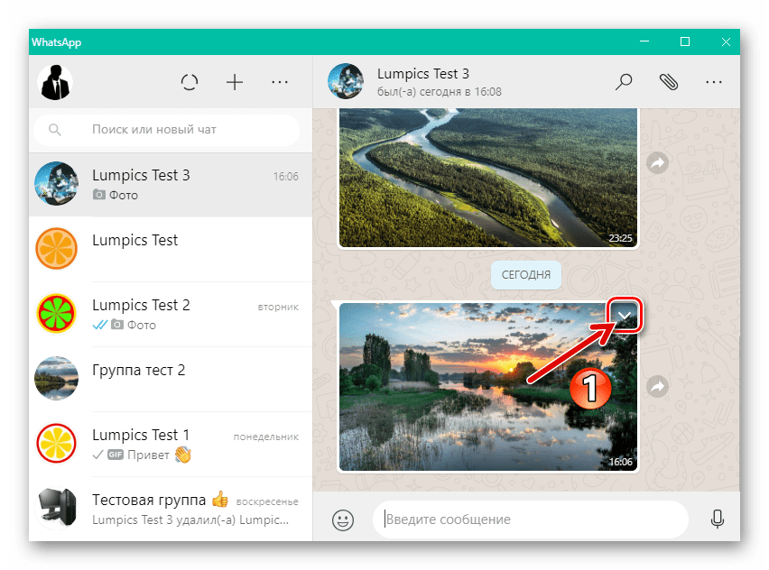 WhatsApp для Windows вызов меню действий, применимых к изображению в чате
