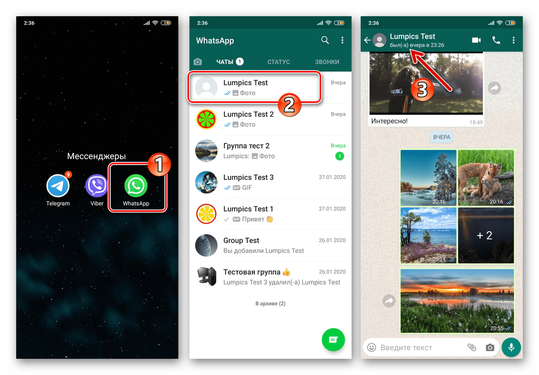 WhatsApp - запуск мессенджера, проверка онлайн-статуса (был в сети) потенциально применившего блокировку контакта