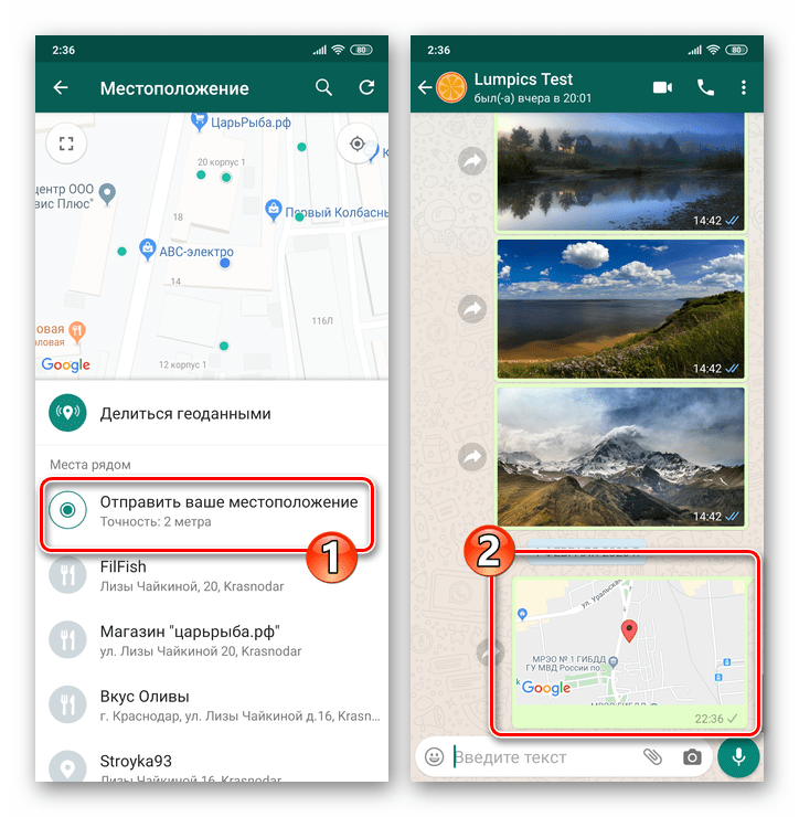WhatsApp для Android единоразовая отправка своей геопозиции в чат или группу