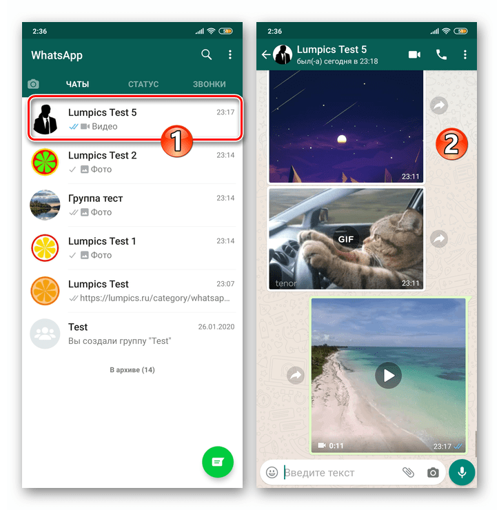 WhatsApp для Android открытие переписки, содержащей файл (фото, видео, GIF) для пересылки из мессенджера в другой сервис
