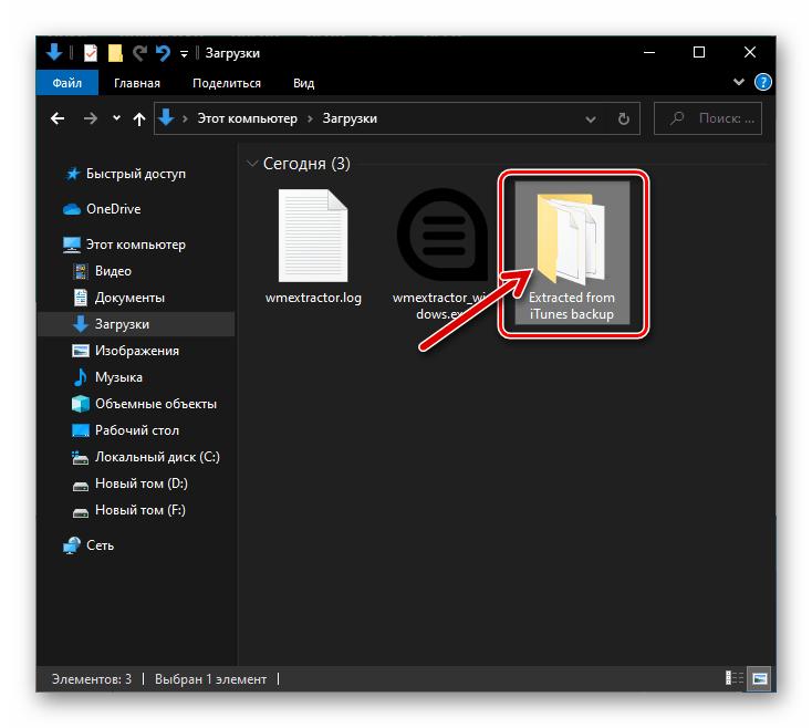 WhatsApp WazzapMigrator Exctractor папка с файлами, извлеченными программой