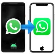Как перенести ВатсАп с Андроида на айФон