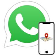 Как скинуть геолокацию по WhatsApp с айФона