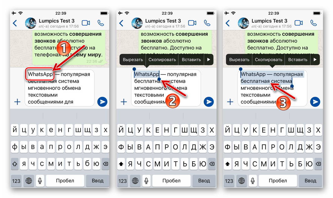WhatsApp для iOS выделение фрагмента текста в формируемом сообщении, чтобы применить форматирование жирным шрифтом