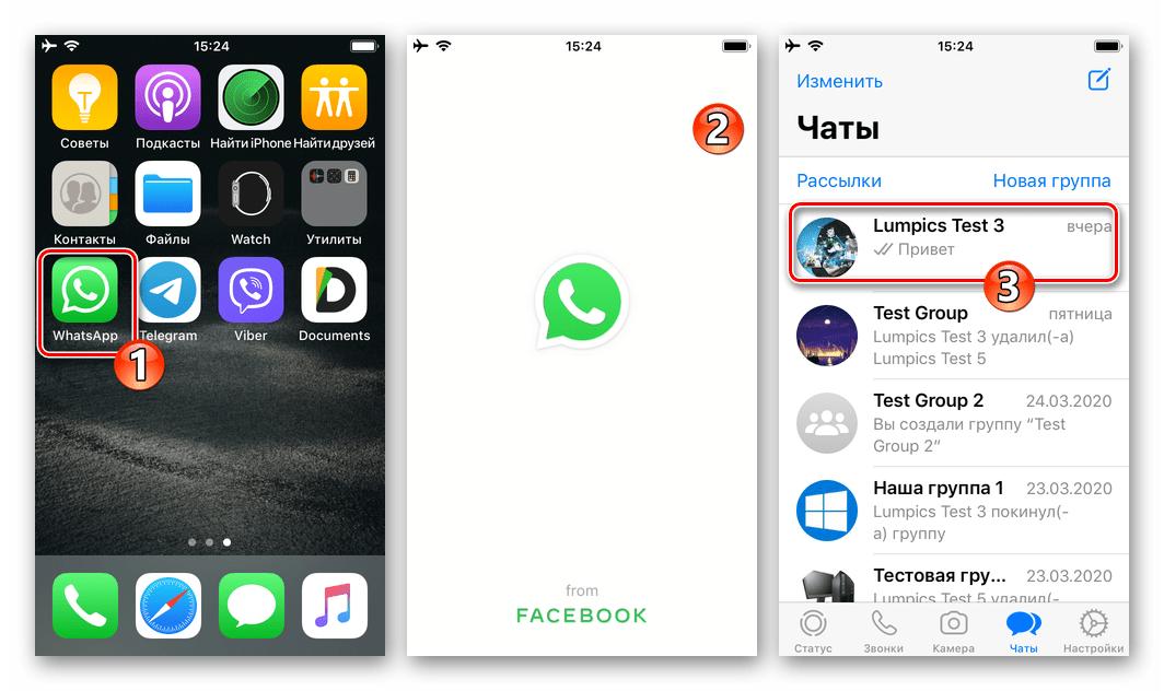 WhatsApp для iPhone запуск программы, переход в персональный или групповой чат