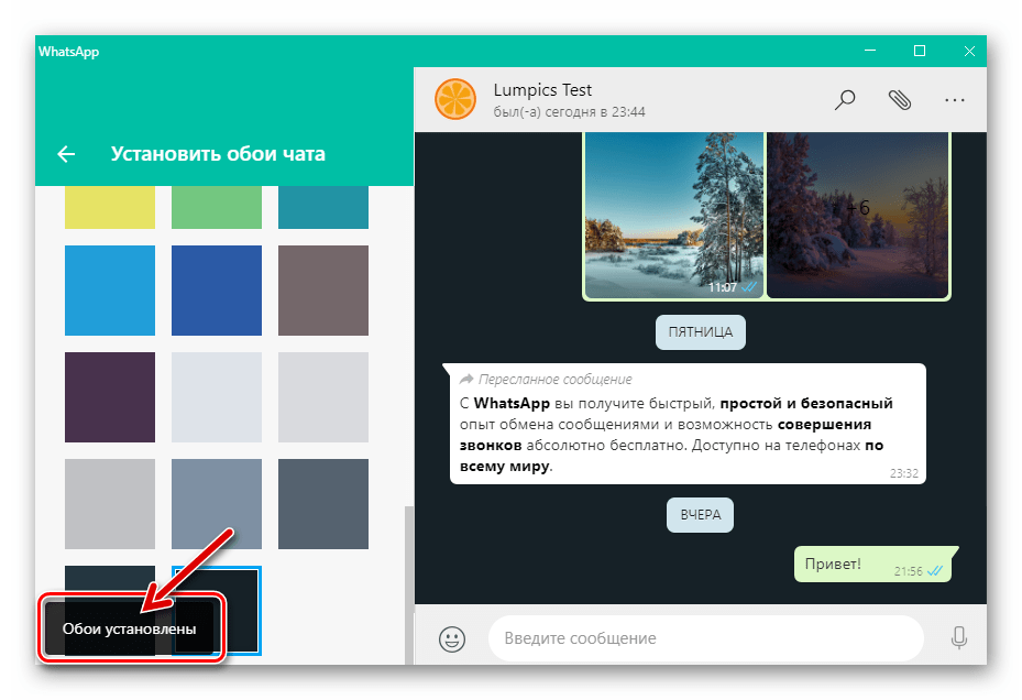 WhatsApp для Windows установка цвета фона для всех индивидуальных и групповых чатов, открытых в мессенджере