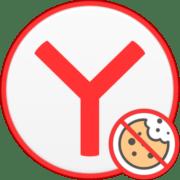 Как отключить куки в Яндекс.Браузере