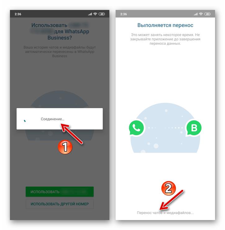 WhatsApp Business для Android процесс переноса данных из существующего аккаунта в мессенджер для бизнеса